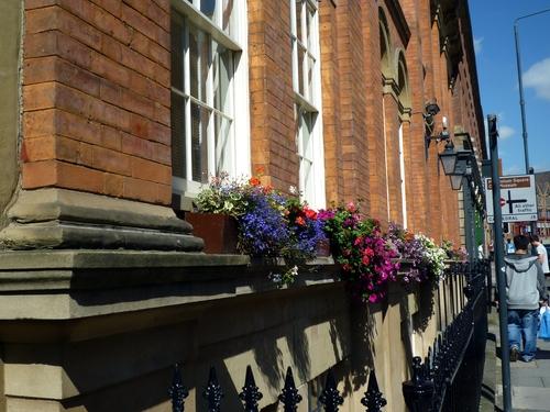街边窗台上的鲜花