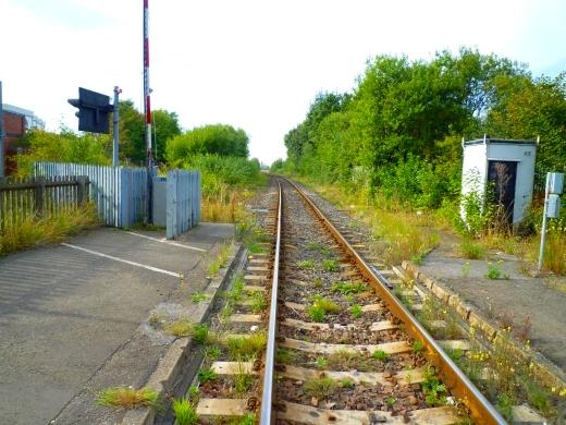 回家的路上经过一条小铁路,工业区的特色