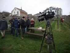 190205_tournageRTBF_vignoble_md_19