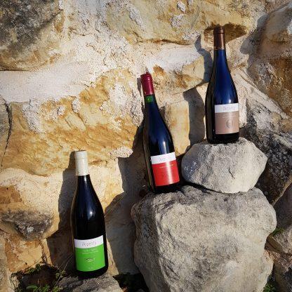 des vins de Chinon authentiques
