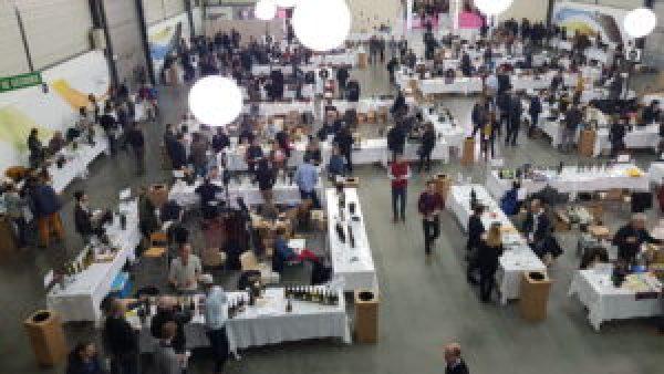 Chaque année le secteur consacré aux vins bio gagne du terrain