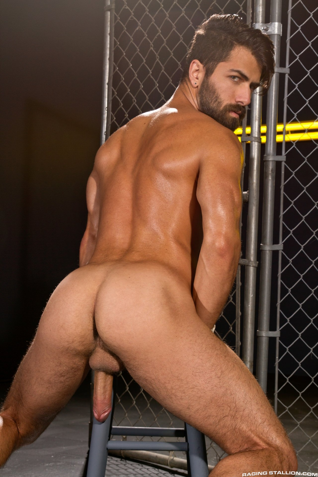 Adam Ramzi gay hot daddy dude men porn
