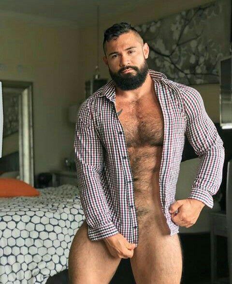 gay hot daddy dude men bear