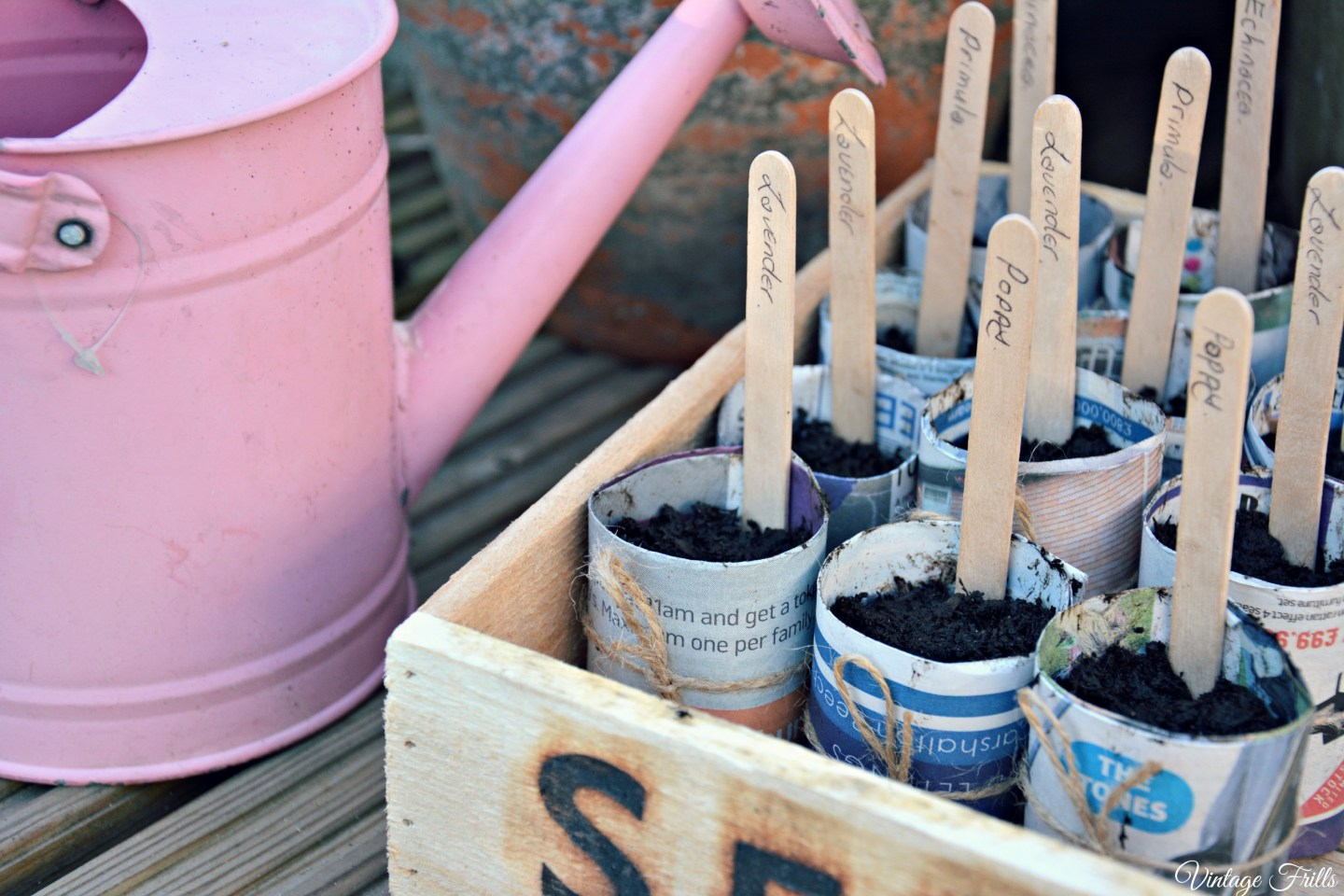 Wooden Seed Trey and Newspaper Seed Pots