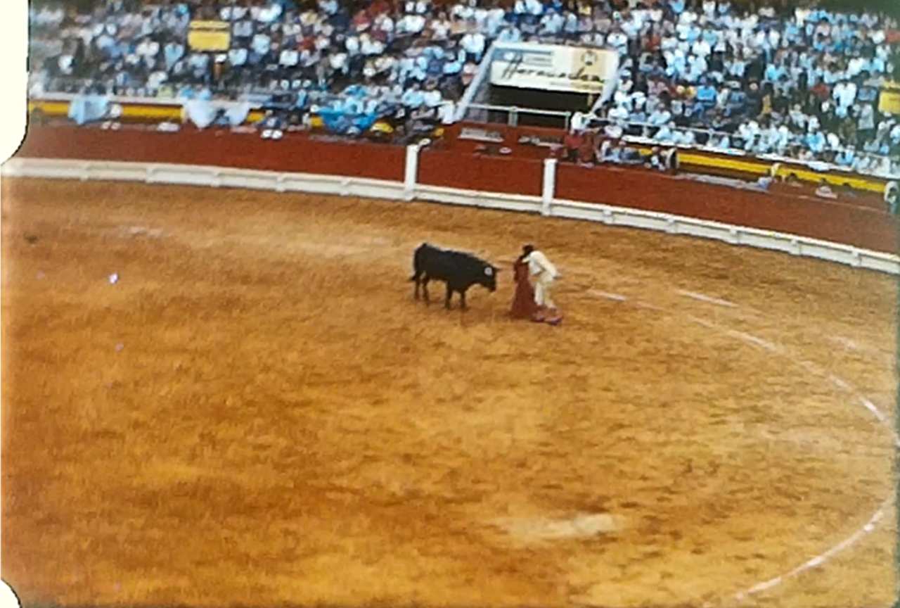A bull fight in a Spanish bull ring c 1970
