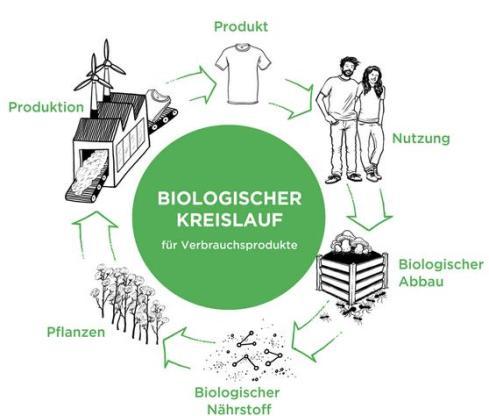 Biologischer Kreislauf, Quelle: Cradle to Cradle e.V.