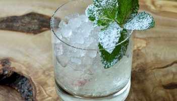 Gin Julep