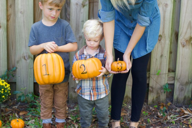 Pregnancy Announcement Ideas Pumpkins