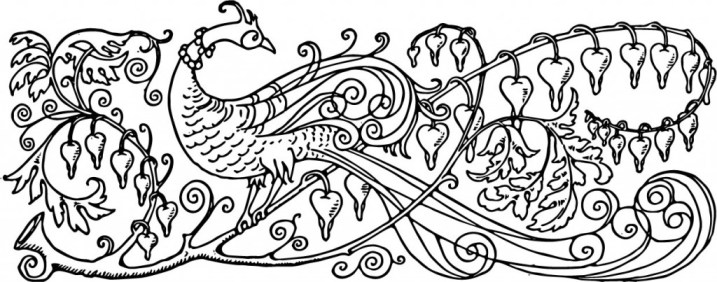vgosn_vintage_peacock_illustration_bw