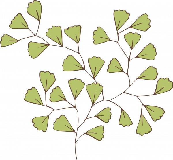 vgosn_vintage_greenery_clip_art_image_colored