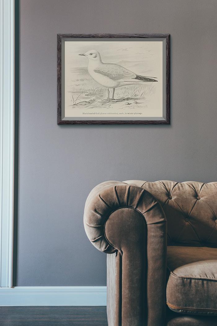 Vintage Seagull Clip Art Printable Art