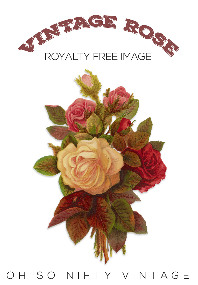 Vintage Rose Royalty Free Image No. 1
