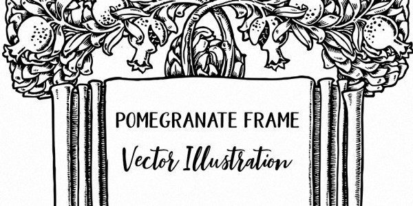 Pomegranate Frame Vector Illustration
