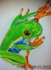 Frog (pencil crayon)