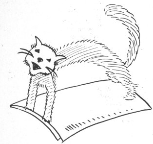 cat-pipe-cleaner