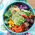 Sesame Cashew Noodle Salad Bowls are just the thing for hot summer meal. They are loaded with a rainbow of colorful fruits and vegetables, shrimp or tofu.