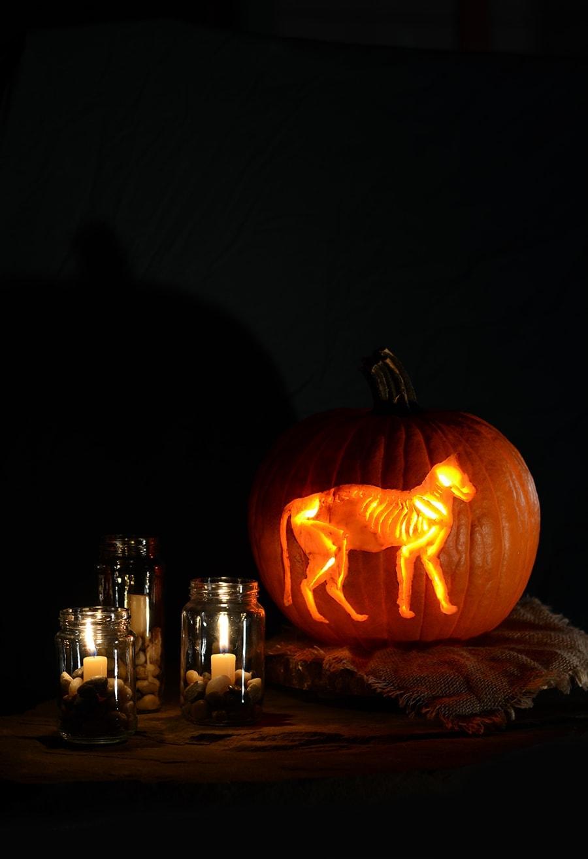 Skeleton Cat Printable Pumpkin Carving Pattern - Vintage Kitty