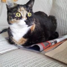Tilly loves magazines