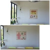 Affiche scolaire rossignol La peau -Le système sympathique