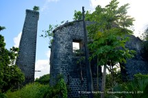 Antoinette Old Mill and Chimney
