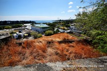 GRNW Port Louis Donjon St Louis Fortification Estuary View