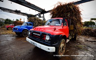 Old Bedford J6 Trucks Unloading Mon Desert Alma Mauritius