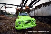 Old Green Bedford J6 Truck Unloading Mon Desert Alma Mauritius