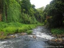 The Riviere des Anguilles River