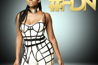 fdn cover