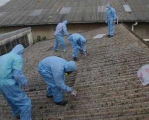 Sustitución del amianto en chalets