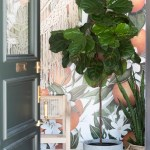 The Complete Guide To Caring For A Fiddle Leaf Fig Vintage Revivals