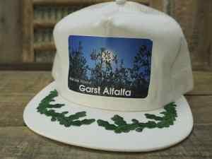 Garst Alfalfa