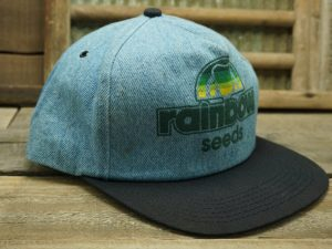 Rainbow Seeds Denim Hat