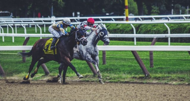 DRF-Legend-Steven-Crist-on-Value-Investing-and-Horse-Betting