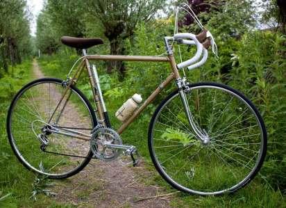 Local Bike Store bike Stormvogel
