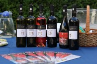 vinuri noi