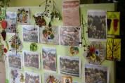 expozitia elevilor Bucerdea