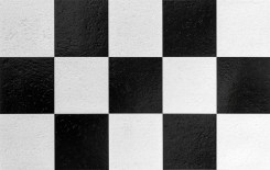 Ajedrez Black and White