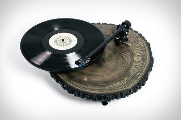 Audiowood Black Barky