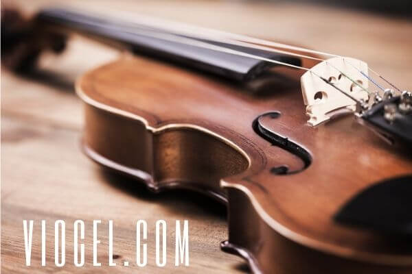 how to play the violin for beginner