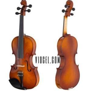 cecilio cvn300 violin