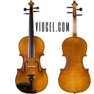 cecilio cevn-1bk electric violin