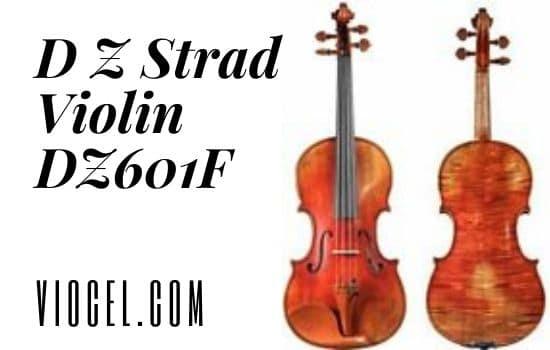 D Z Strad Violin DZ601F