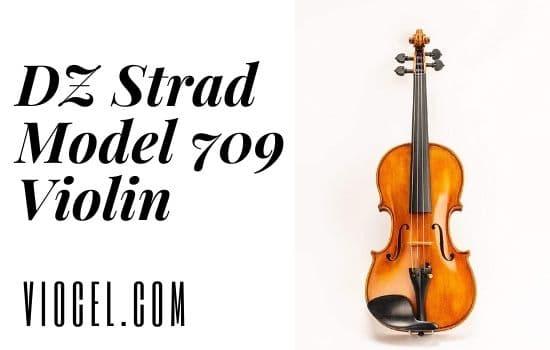 DZ Strad Model 709 Violin