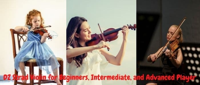 DZ Strad Violin for Beginners, Intermediate, and Advanced Player