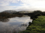 A picture of rural Marin County in the San Francisco Bay Area.