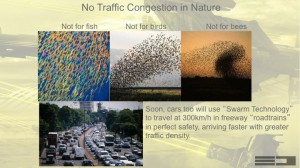 An image showing how swarms of insects and birds as an analogy for what autonomous vehicles will do in the future.