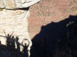 An image of human shadows on a wall of the Grand Canyon.