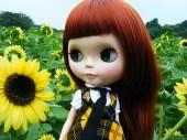Sunflowers-blythe-dolls-28006397-500-375