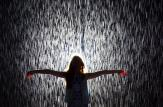 MOMA-Rain-Room-2-horizontal